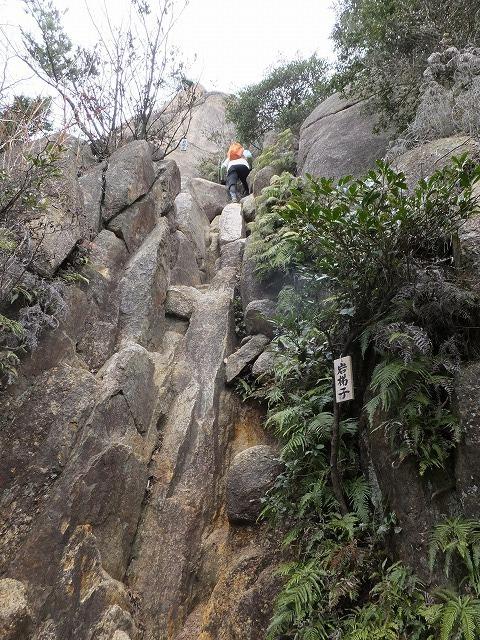 【公開ハイキング】 芦屋川~岩梯子(岩場)~荒地山~六甲最高峰~有馬温泉
